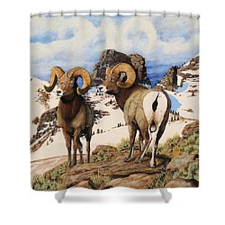 Chimney Rock Thunderheads Shower Curtain