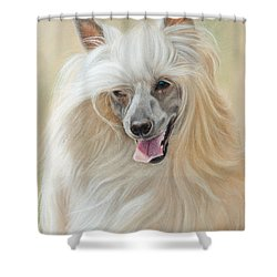Chinese Crested Dog Shower Curtain