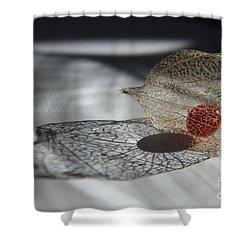 Chinese Lantern Plant - B Shower Curtain