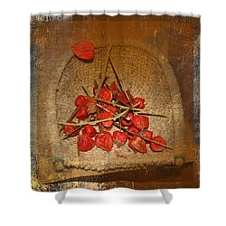 Chinese Lantern Seed Pods Shower Curtain by Kume Bryant