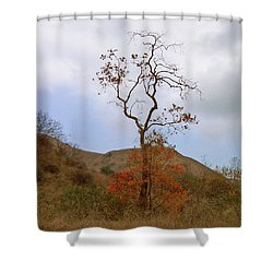 Chino Hills Tree Shower Curtain by Ben and Raisa Gertsberg