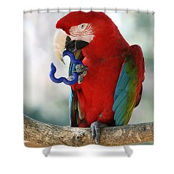 Chip Shower Curtain by Judy Whitton
