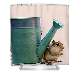 Chipmunk And Watering Can Shower Curtain by Peggy Collins