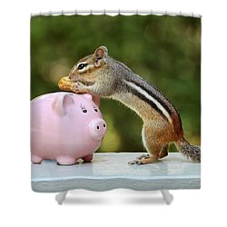 Chipmunk Saving Peanut For A Rainy Day Shower Curtain by Peggy Collins