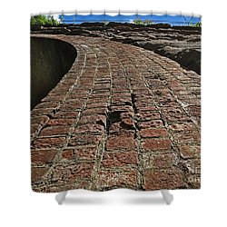 Chipmunks View Of A Stone Bridge Shower Curtain