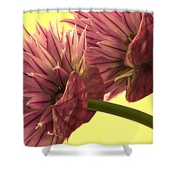 Chive Macro Beauty Shower Curtain