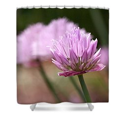 Chives Shower Curtain by Rona Black