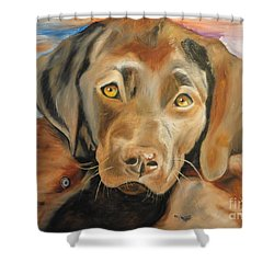 Shower Curtain featuring the painting Chocolat Labrador Puppy by PainterArtist FIN