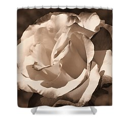 Shower Curtain featuring the photograph Chocolate Delight by Athala Carole Bruckner