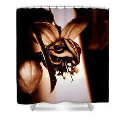 Shower Curtain featuring the photograph Chocolate Silk Fuchsia by Jeanette C Landstrom