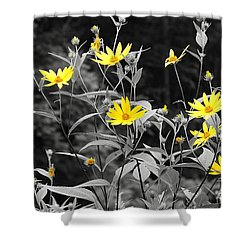 Chokeweeds Sc Shower Curtain by Mary Carol Story