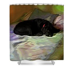 Shower Curtain featuring the mixed media Chopper Dreams Of Beds by Terence Morrissey