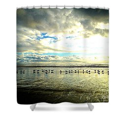 A Chorus Line  Shower Curtain by Margie Amberge