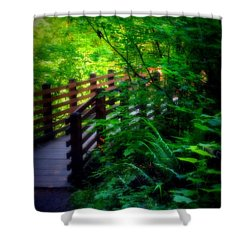 Chosen Path Shower Curtain by Amanda Eberly-Kudamik