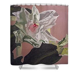 Christmas Bloom Shower Curtain