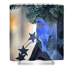 Christmas Bluebird Shower Curtain