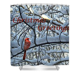 Shower Curtain featuring the photograph Christmas Card - Christmas Greeting by Larry Bishop