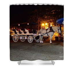 Christmas Carriage Shower Curtain by Bob Sample