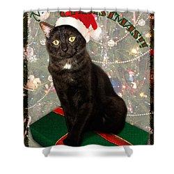 Christmas Cat Shower Curtain by Adam Romanowicz