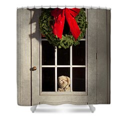 Christmas - Clinton Nj - Christmas Puppy Shower Curtain by Mike Savad