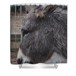 Christmas Donkey Shower Curtain