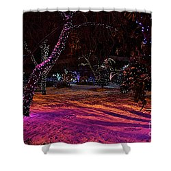 Christmas In The Park Shower Curtain