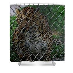 Christmas Leopard II Shower Curtain
