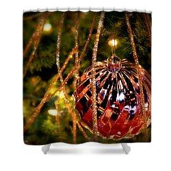 Christmas Magic Shower Curtain by Karen Wiles