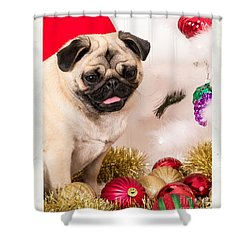 Christmas Morning Shower Curtain by Edward Fielding