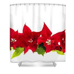Christmas Poinsettias Shower Curtain