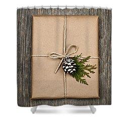 Christmas Present  Shower Curtain by Elena Elisseeva