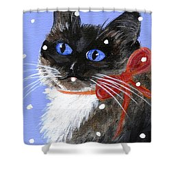 Shower Curtain featuring the painting Christmas Siamese by Jamie Frier