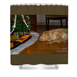 Christmas Train Shower Curtain