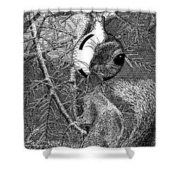 Christmas Tree Squirrel Shower Curtain