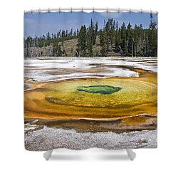 Chromatic Pool Shower Curtain