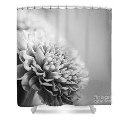 Chrysanthemum In Black And White Shower Curtain