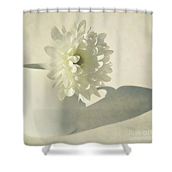 Chrysanthemum Shadow Shower Curtain by Lyn Randle