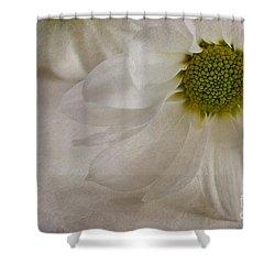 Chrysanthemum Textures Shower Curtain by John Edwards