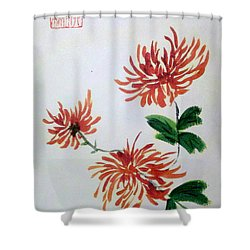Chrysanthemums Shower Curtain