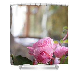 Church Flowers Shower Curtain by Jeremy Voisey