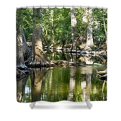 Cibolo Creek - 3 Shower Curtain