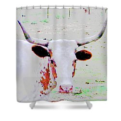 Cibolo Sweetie Pie Shower Curtain