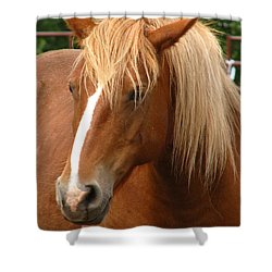 Cinnamon Girl Shower Curtain