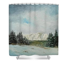 Shower Curtain featuring the painting Cioplea by Sorin Apostolescu