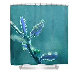 Circles From Nature - C4t04c Shower Curtain by Variance Collections