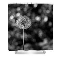 Circles Of Life Shower Curtain by Rona Black