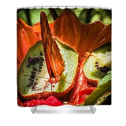 Citrus Butterfly Shower Curtain by Karen Wiles