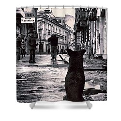 City Streets And The Theory Of Waiting Shower Curtain