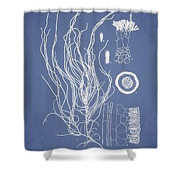 Cladosiphon Flagelliformis Shower Curtain by Aged Pixel