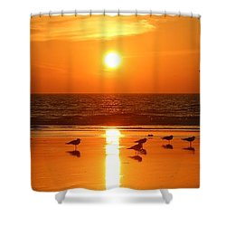 Clam Digging At Sunset - 2 Shower Curtain